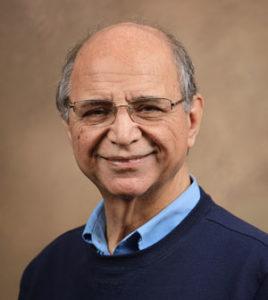 Engineering Professor Dr. Benham Kamali