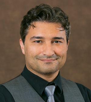 Engineering Professor Dr. Alireza Sarvestani